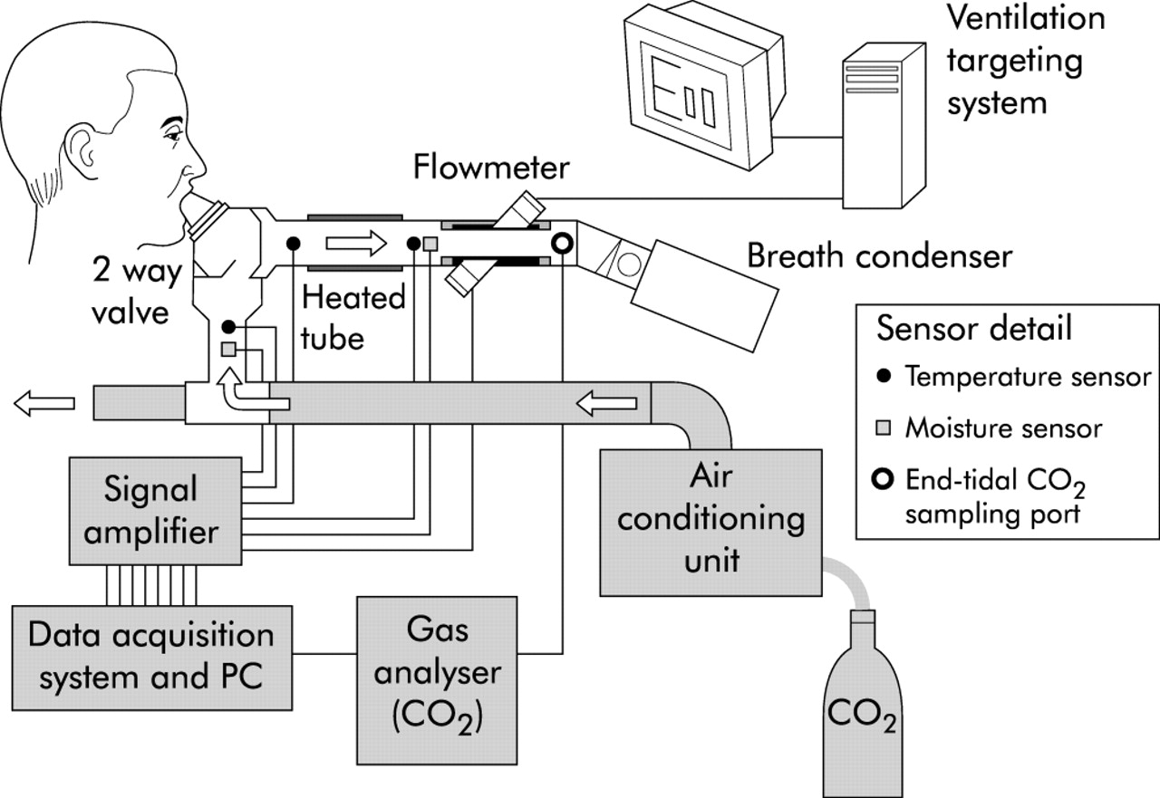 Effects of breathing pattern and inspired air conditions on breath  #3A3A3A