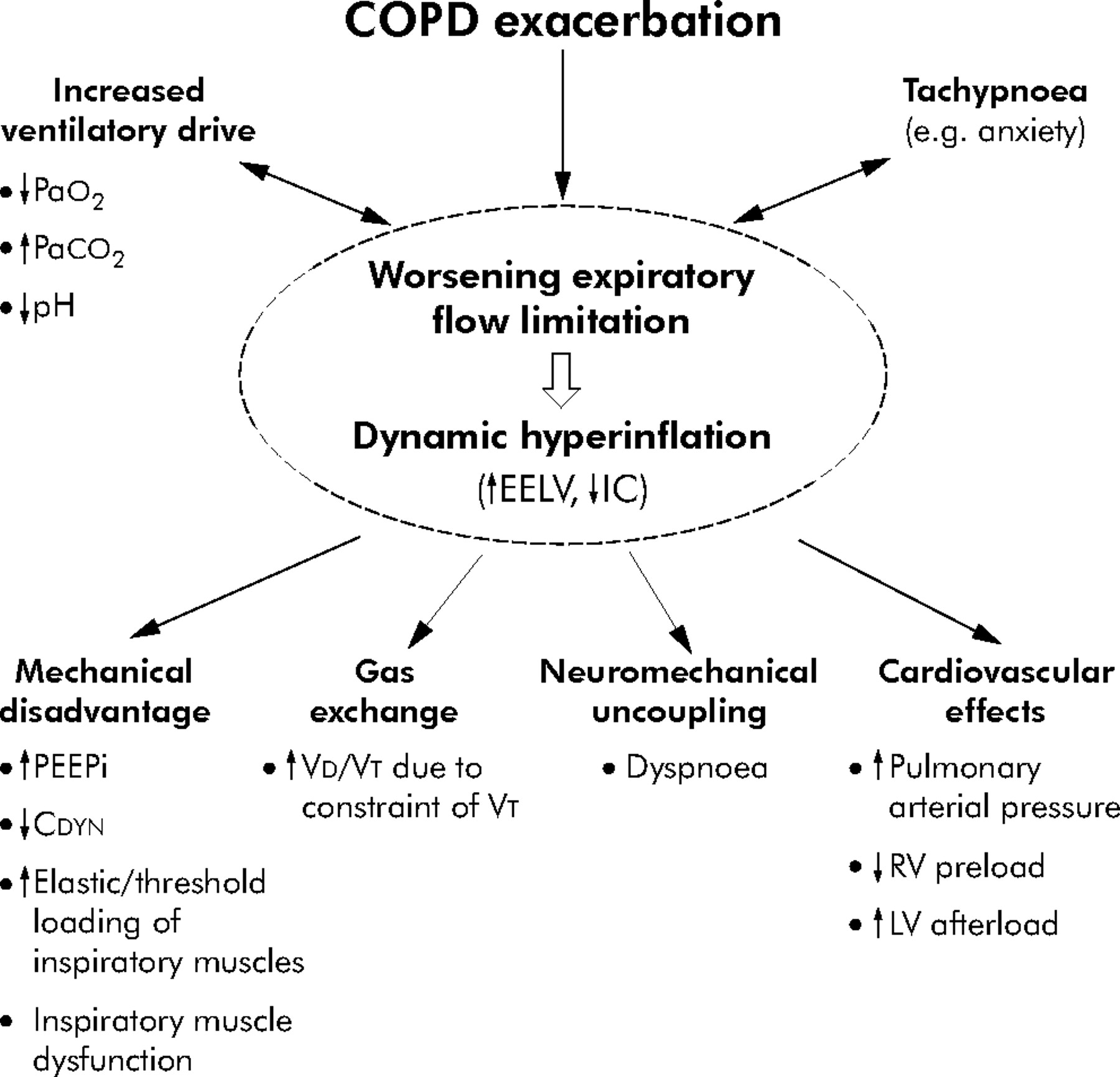 pathophysiology copd Prevention or lowering the risk factors for chronic obstructive pulmonary disease includes avoiding the causes and irritants (for example, smoking) or vaccines that protect the lungs from infection (for example, the flu and pneumococcal vaccines).