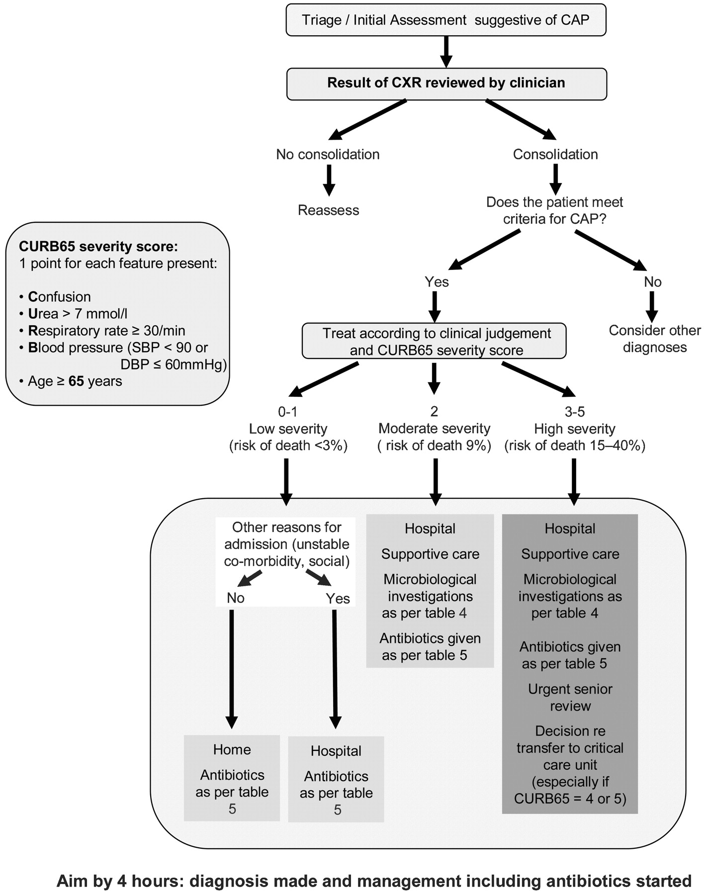 Pneumonia In Spanish >> BTS guidelines for the management of community acquired pneumonia in adults: update 2009 | Thorax