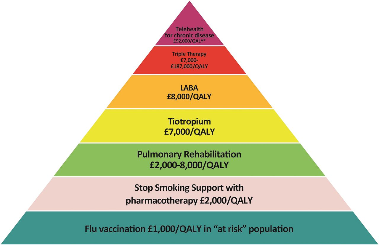 Lrn S Copd Value Pyramid Nhs Networks