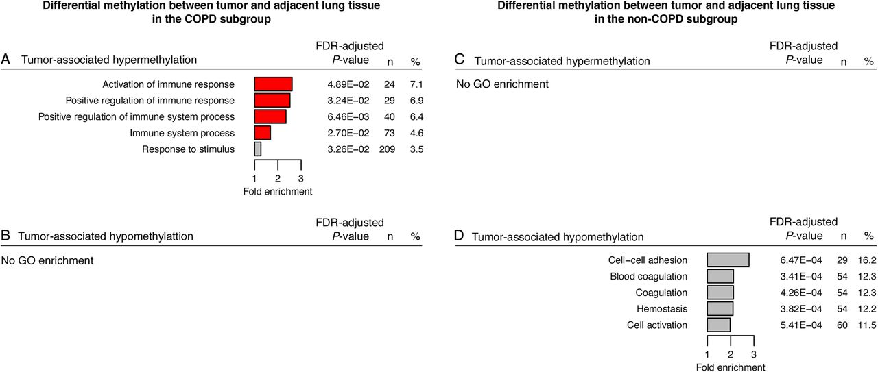 Dna Methylation Profiling Of Non Small Cell Lung Cancer Reveals A
