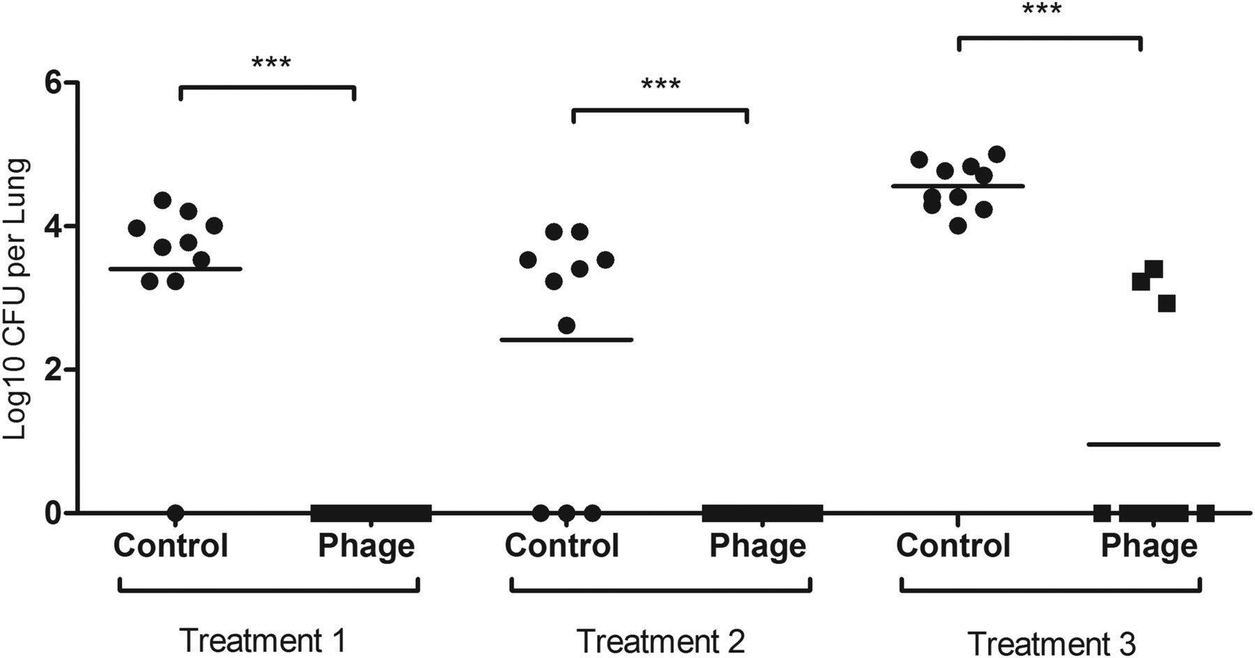 Phage therapy is highly effective against chronic lung