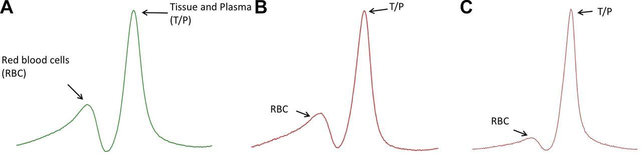 Experimental and quantitative imaging techniques in interstitial
