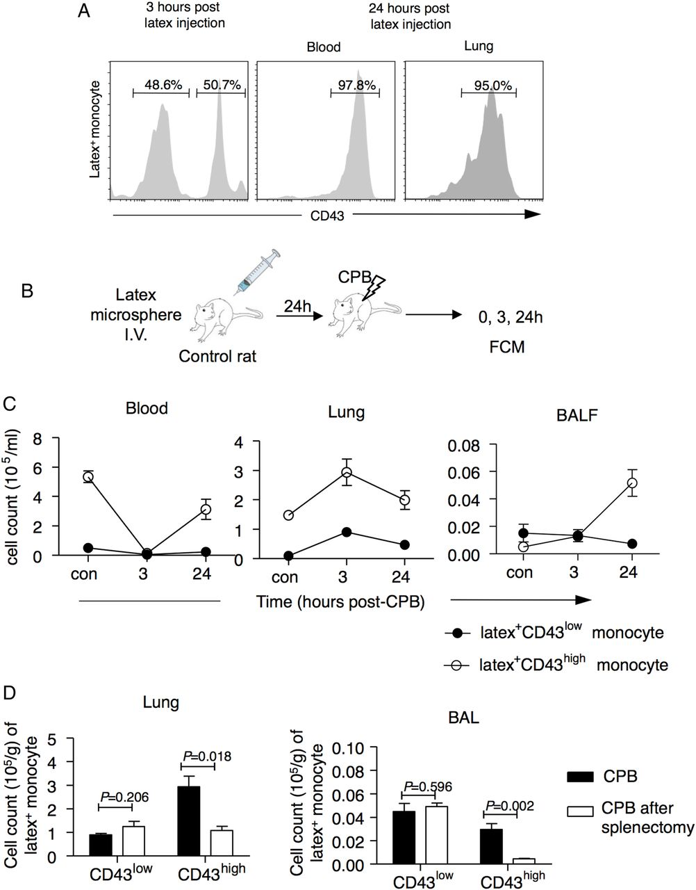 Immature monocytes contribute to cardiopulmonary bypass induced download figure pooptronica Image collections
