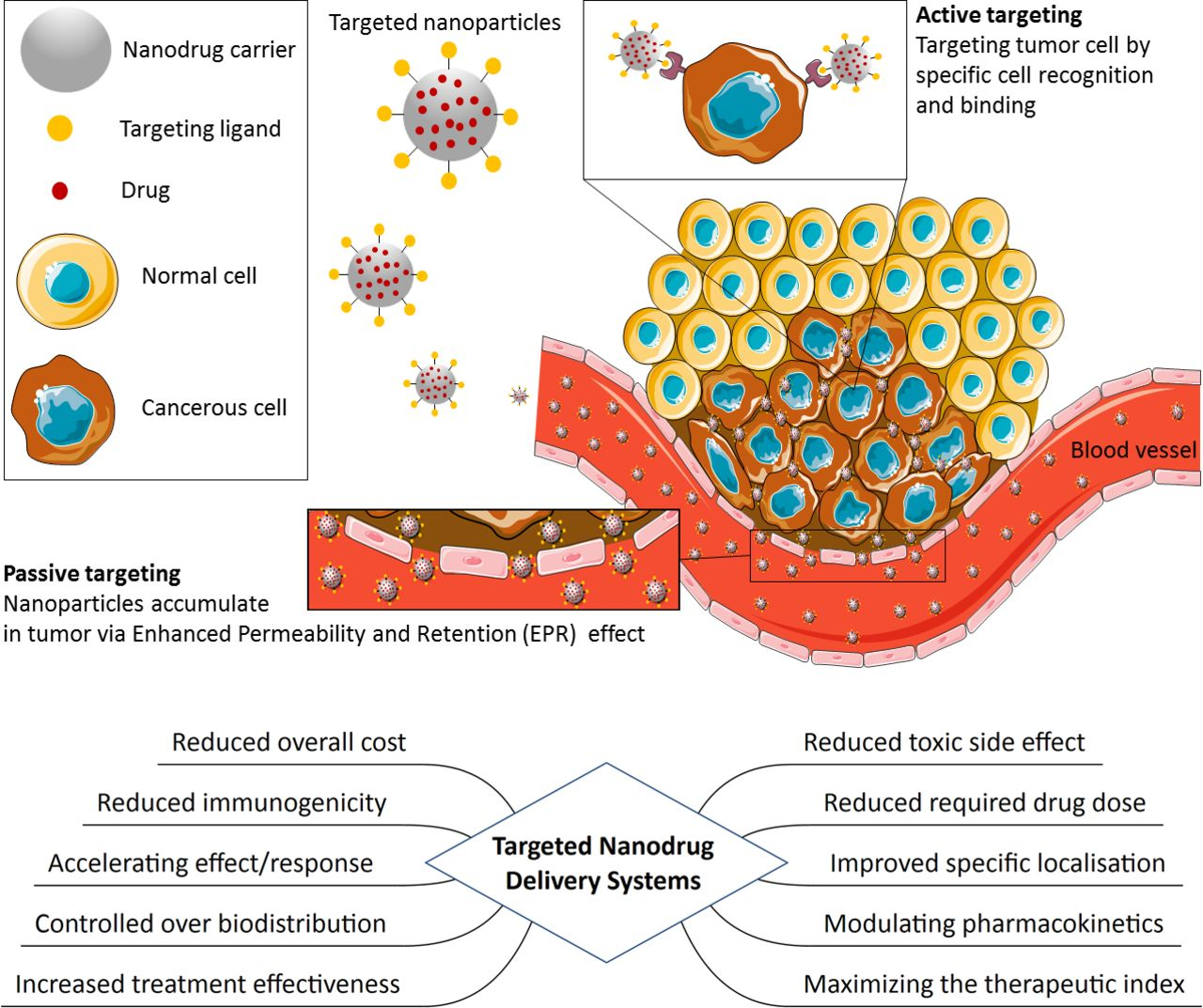 Nanotechnology based therapeutics for lung disease | Thorax